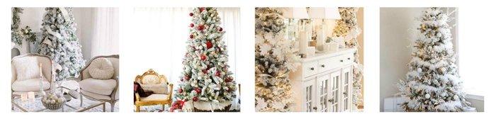 King of Christmas Tree Tour