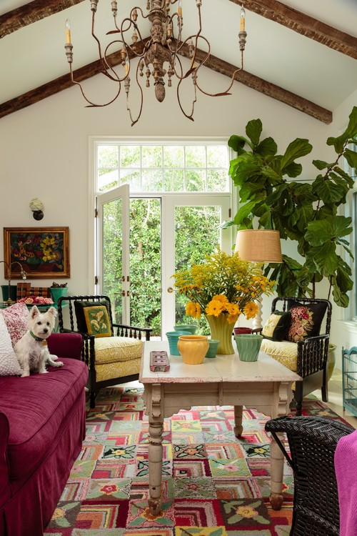 Eclectic Living Room with Fiddle Leaf Fig