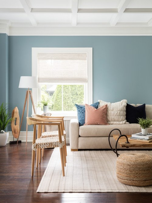 Modern Eclectic Living Room in Light BLue
