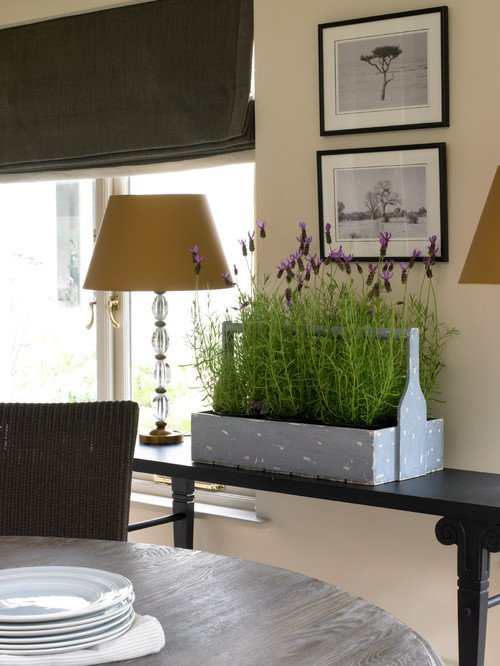 Lavender in a Dining Room