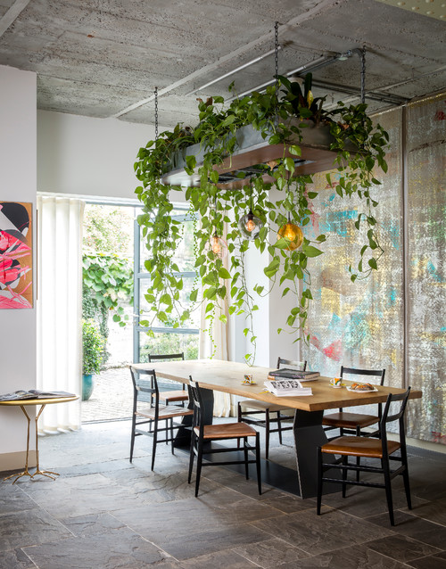 Dining Room with Houseplants Chandelier