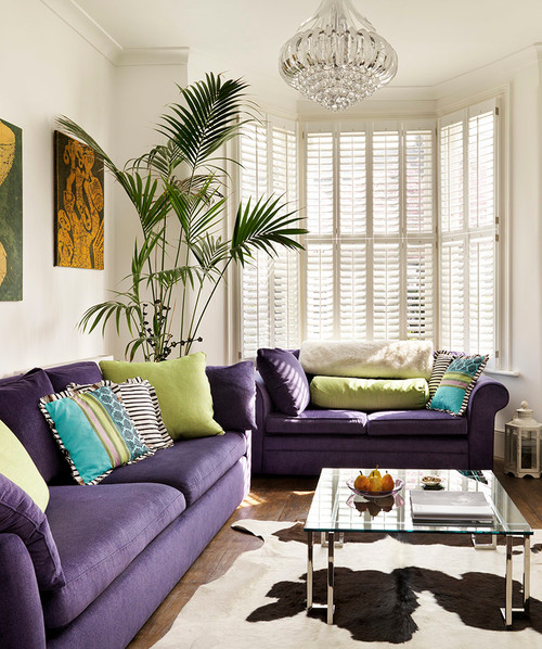 Matching Purple Couches in Living Room