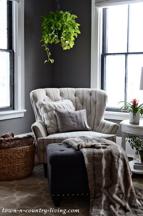 Dark Gray Mole's Breath Paint Color in Modern Country Living Room
