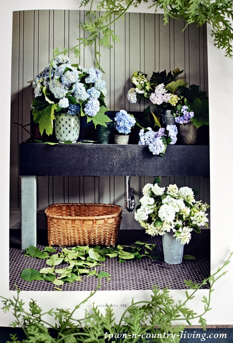 Martha's Flowers - how to garden, grow, and arrange