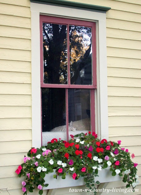 Yellow House with Impatiens in a Window Flower Box