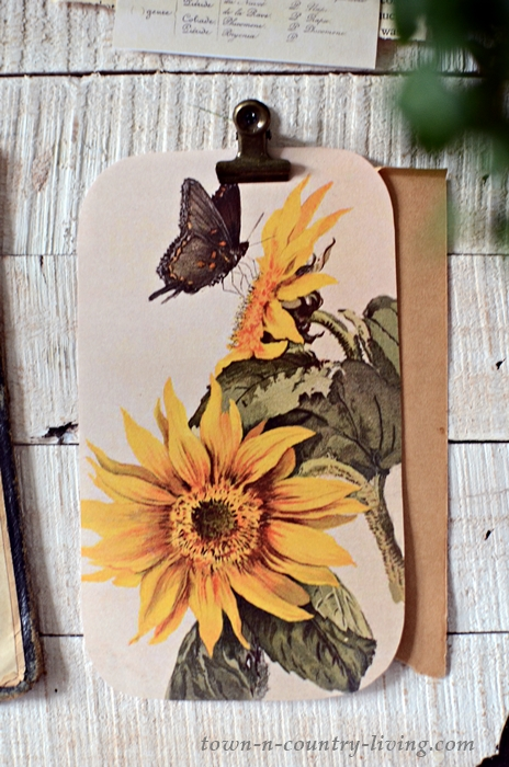 Vintage Sunflower with Butterfly Print