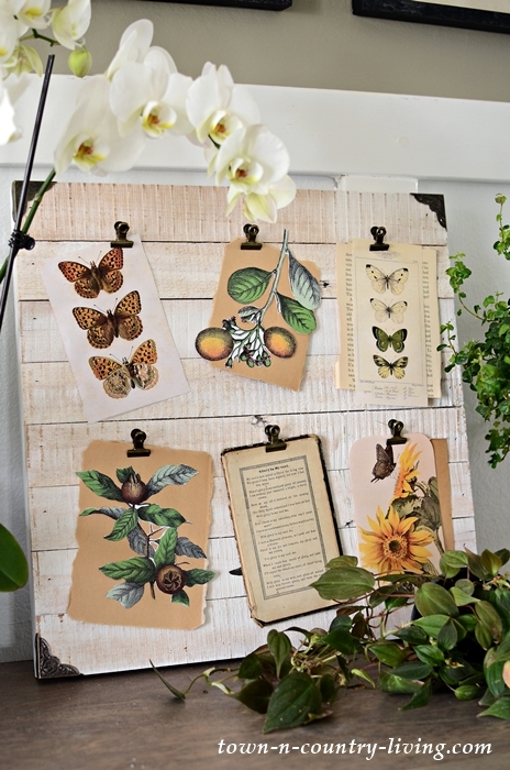 Nature Board with Free Printables