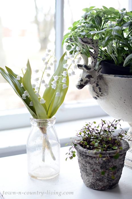 Plant Table in Welcoming Entryway