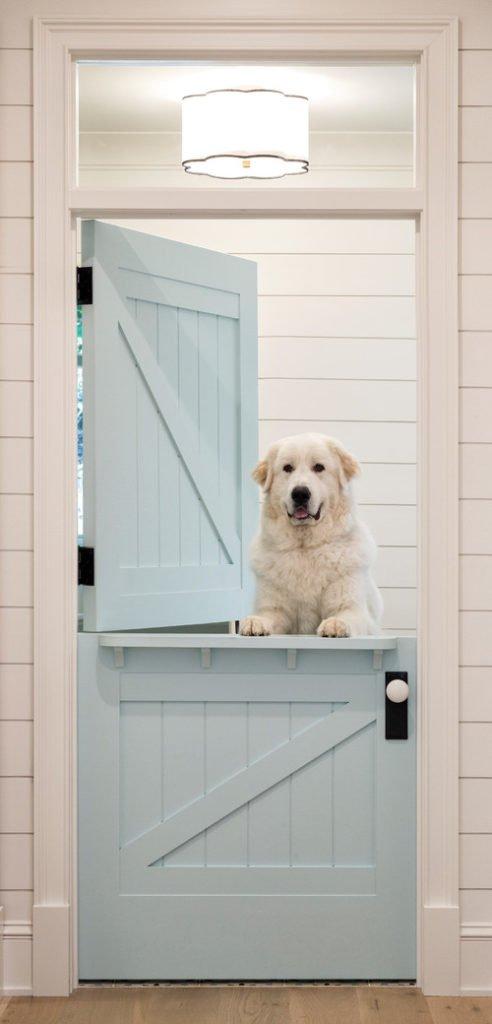 Pale Blue Dutch Door with White Dog