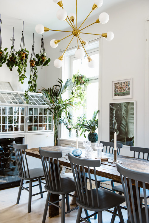 Eclectic Dining Room with Houseplants