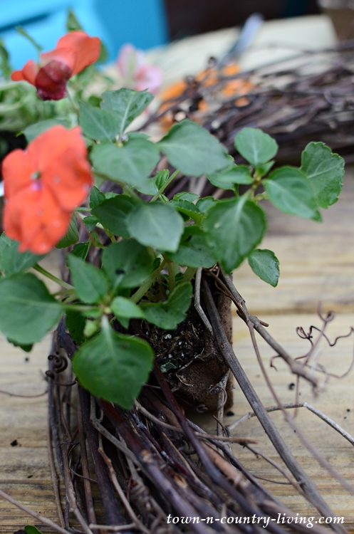 How to make a natural live wreath with grapevines and flowers