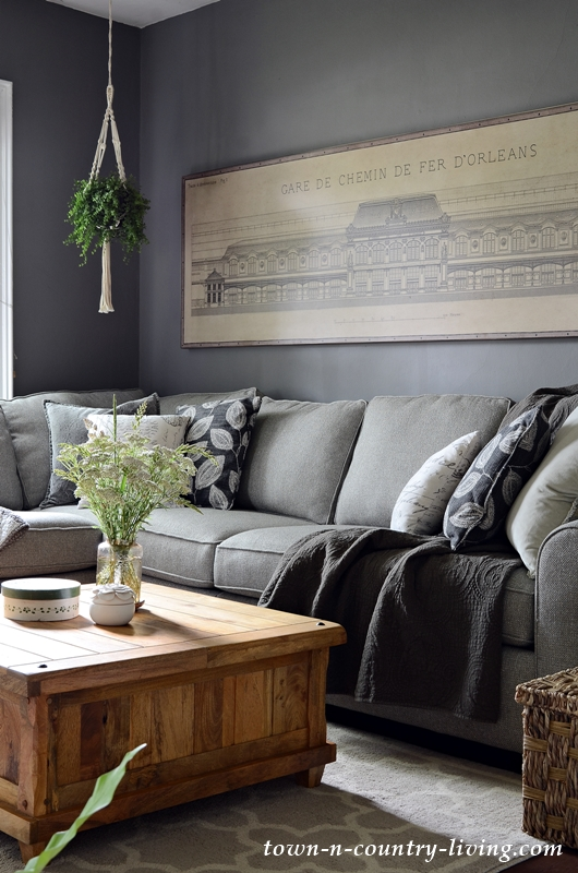 Summer Neutrals - Dark Gray Living Room
