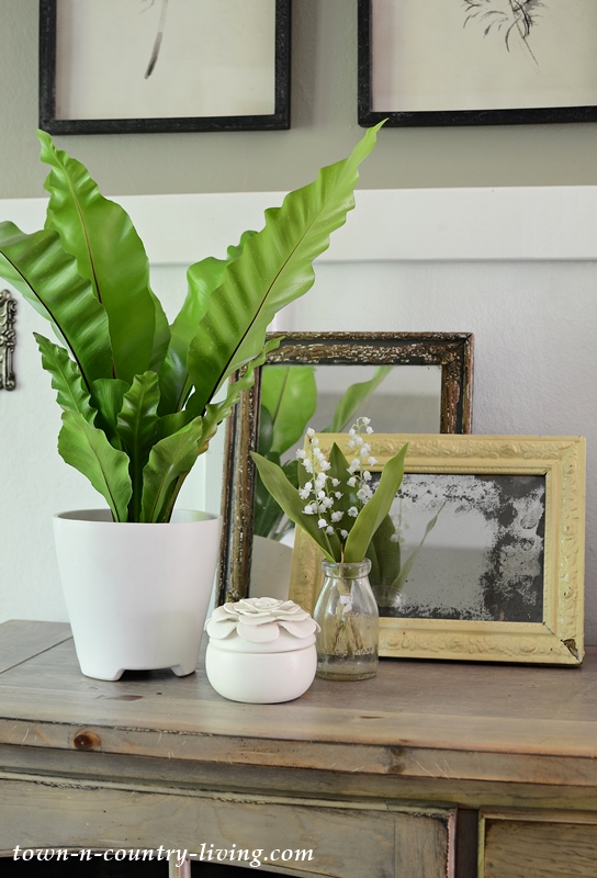 Vintage Mirrors and Houseplants - Earthy Vignettes