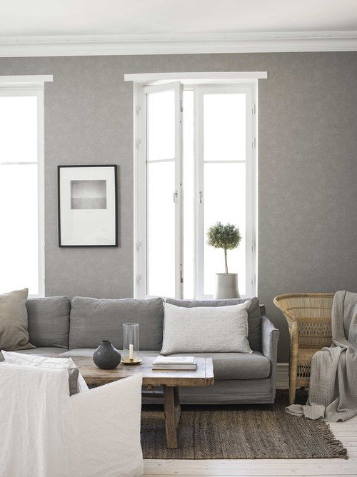 Scandinavian Living room in Gray and White