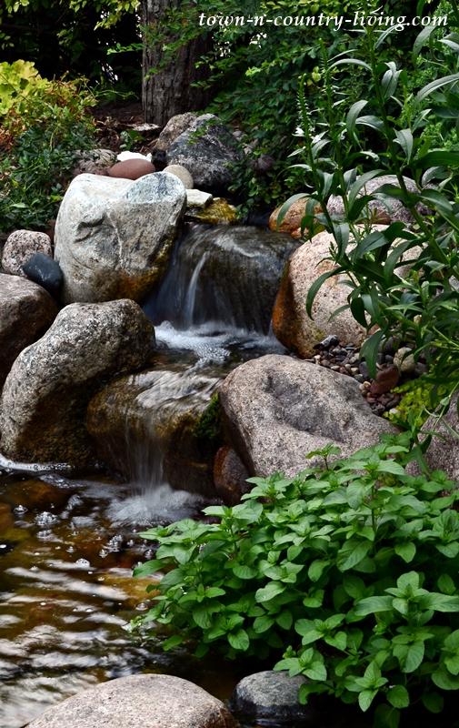 Garden Pond and Waterfalls