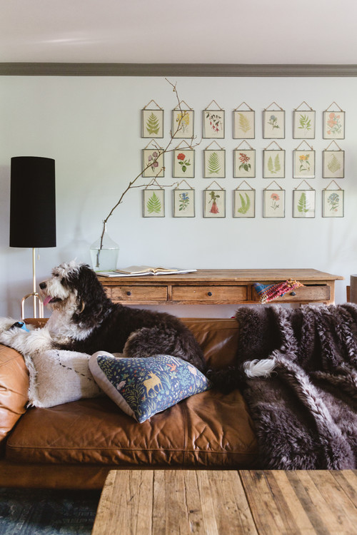 Leather Couch with Dog in Stylish Condo