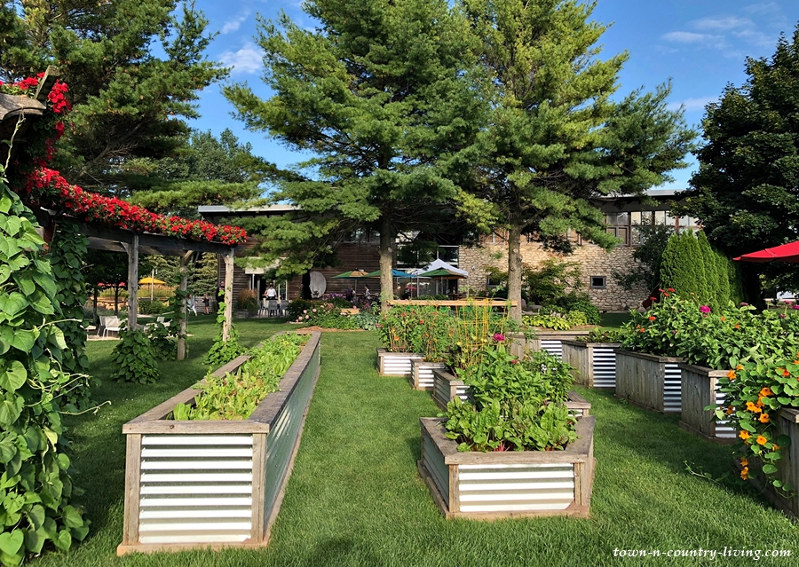Flower and Vegetable Gardens at Winery