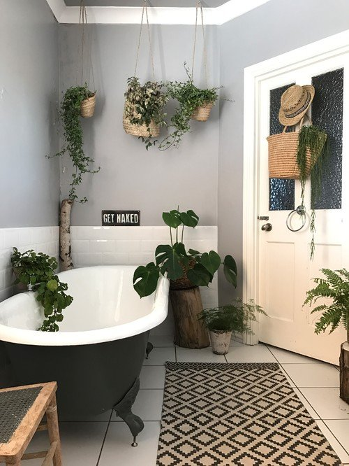Plant Filled Bathroom with Claw Foot Tub