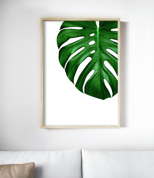 Contemporary Living Room with Monstera Art Work