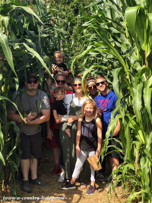 Family in the Corn Field at the Animal Farm in Door County