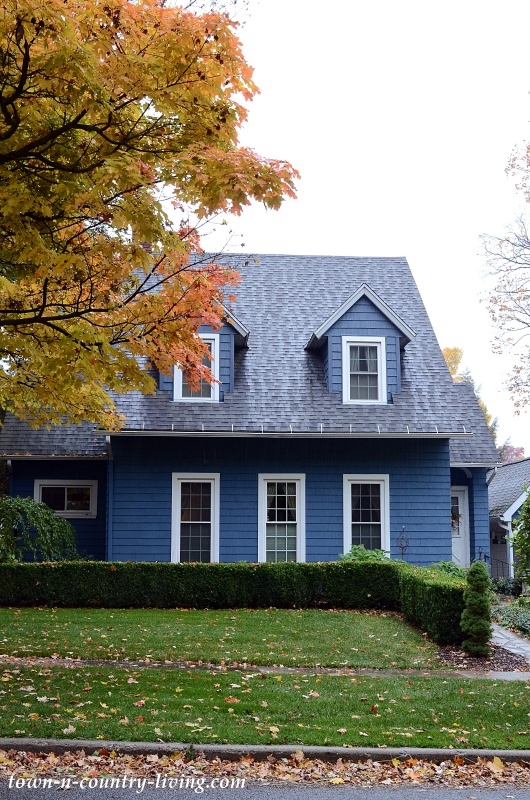Dark Blue Cozy Cottage
