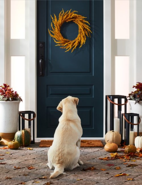 Fall Front Door Decor - navy door with orange wreath