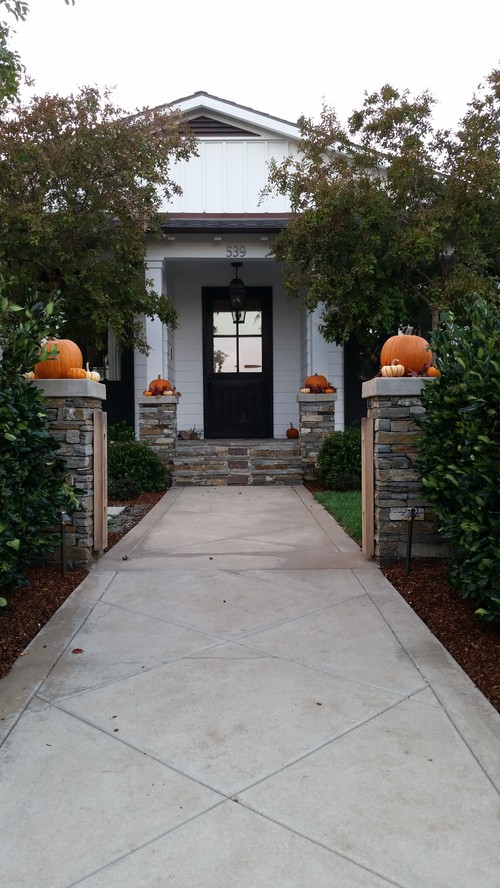 Pumpkins Leading to Entryway of Traditional Home