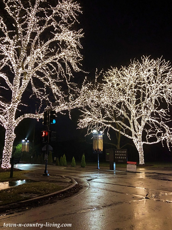 Christmas Lights at Chicago Botanic Garden