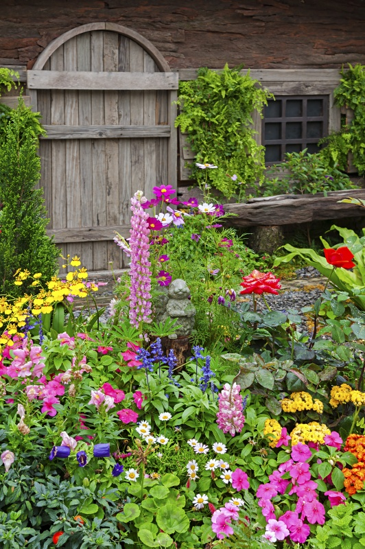 Array of Brightly Colored Flowers in a Cottage Garden