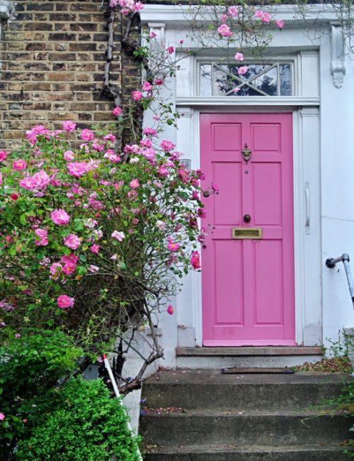 Charming Pink Front Door with Rose Vine