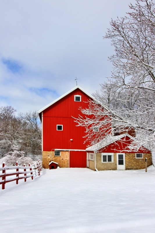 Rural landscape with red barn, wooden red fence and snow - scenic winter