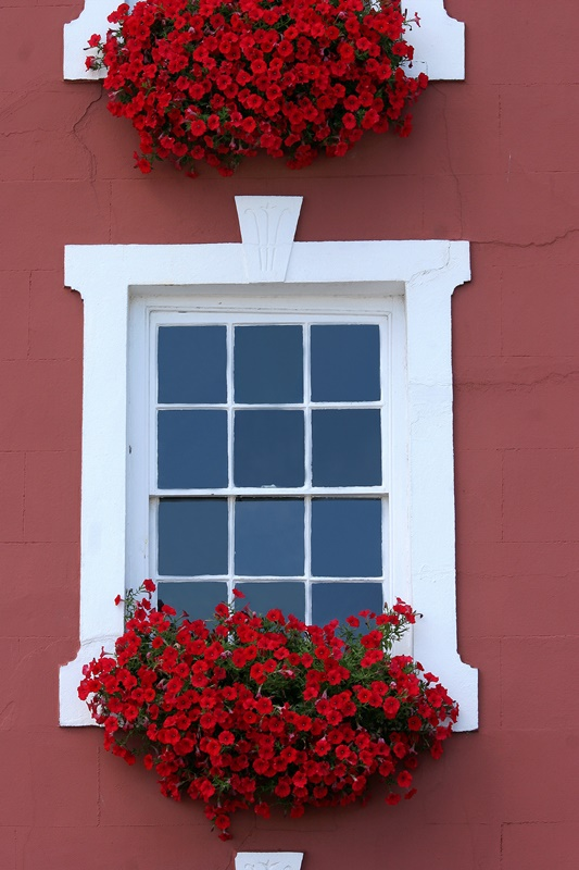 Red Flowers in a Window Box on a Red House