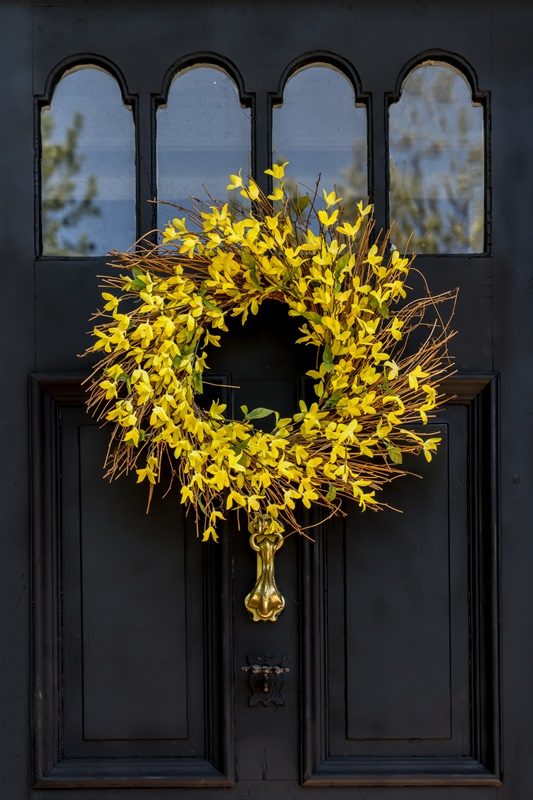 Yellow Forsythia Wreath on Dark Gray Door