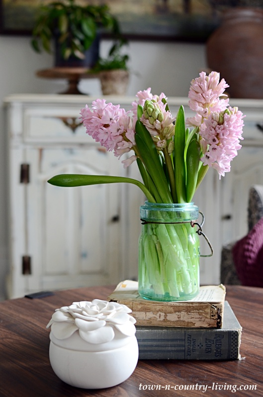 Pink Hyacinths in Vintage Atlas Jar