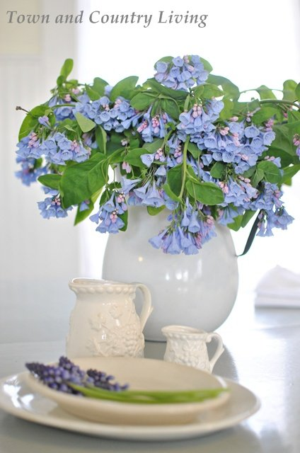 Virginia Bluebells in an Enamelware Pitcher
