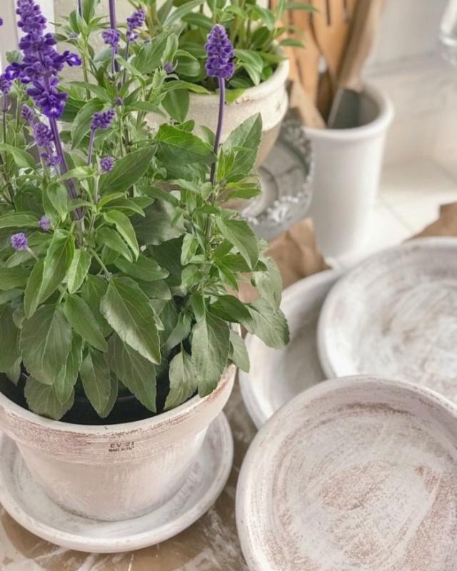 DIY Terra Cotta Pots