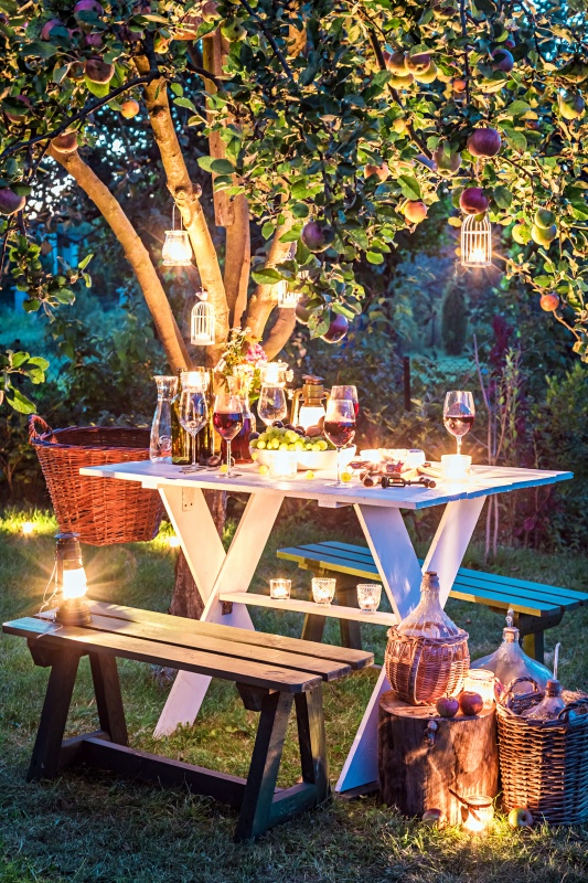 Twilight Dining in the Backyard with Lanterns and Lights
