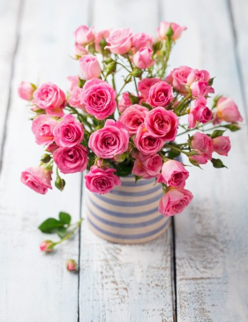 Pink Bouquet of Roses in Blue and White Striped Vase