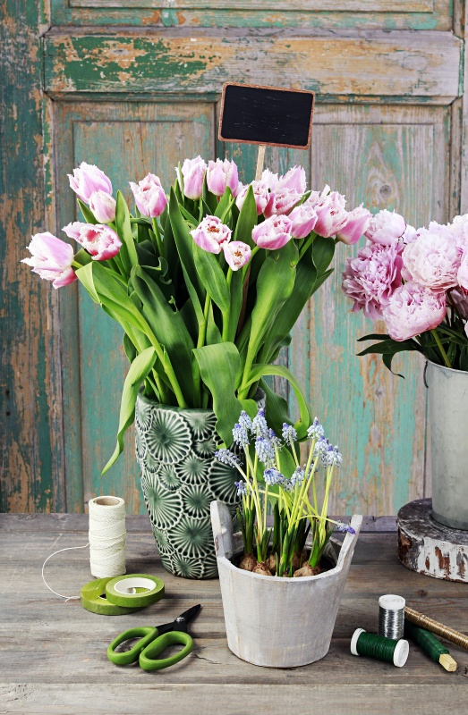 Spring flowers on wooden table. Pink tulips, ranunculus, and purple grape hyacinth