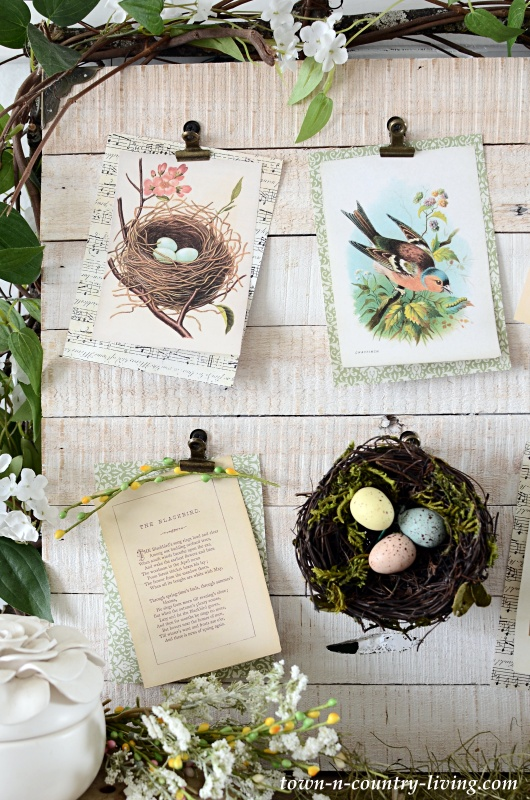 How to Create a Spring Nature Board with Vintage Bird Prints