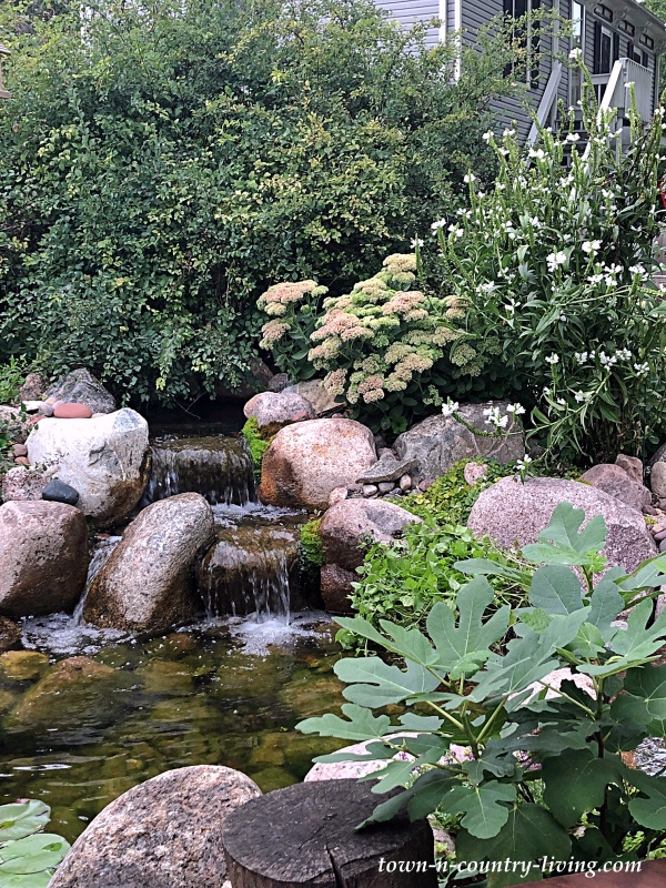 Backyard Waterfall in a Koi Pond by Aquascape