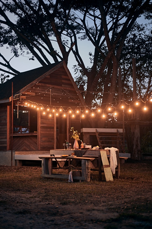 Rustic Outdoor Dining with Edison Lights