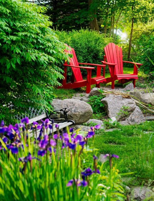 Red Adirondack chairs sitting in a summer garden.