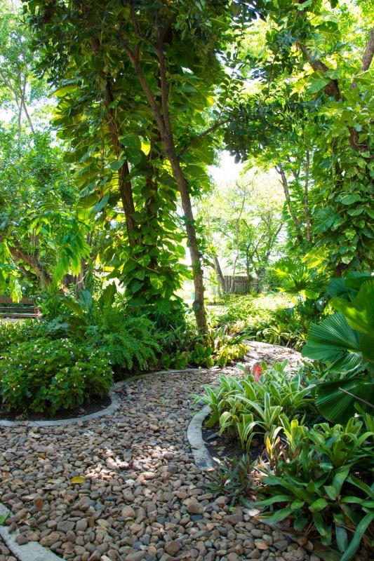 Pebble Path in a Shady Garden