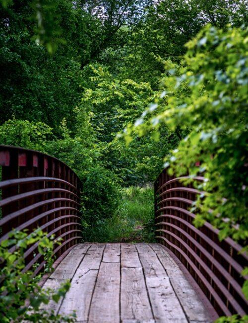 Wooden Foot Bridge on Prairie Path