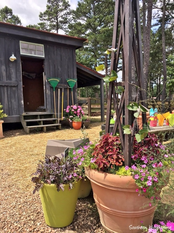 Moss Mountain Farm Tour by Southern Hospitality