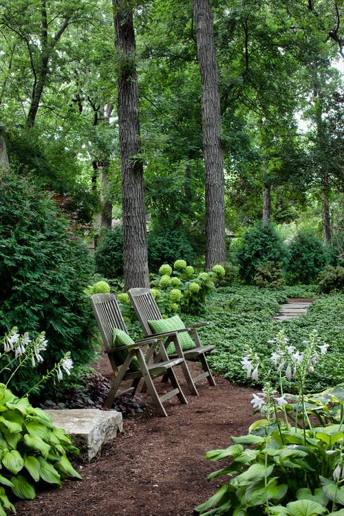 Mulch pathway in backyard shade garden