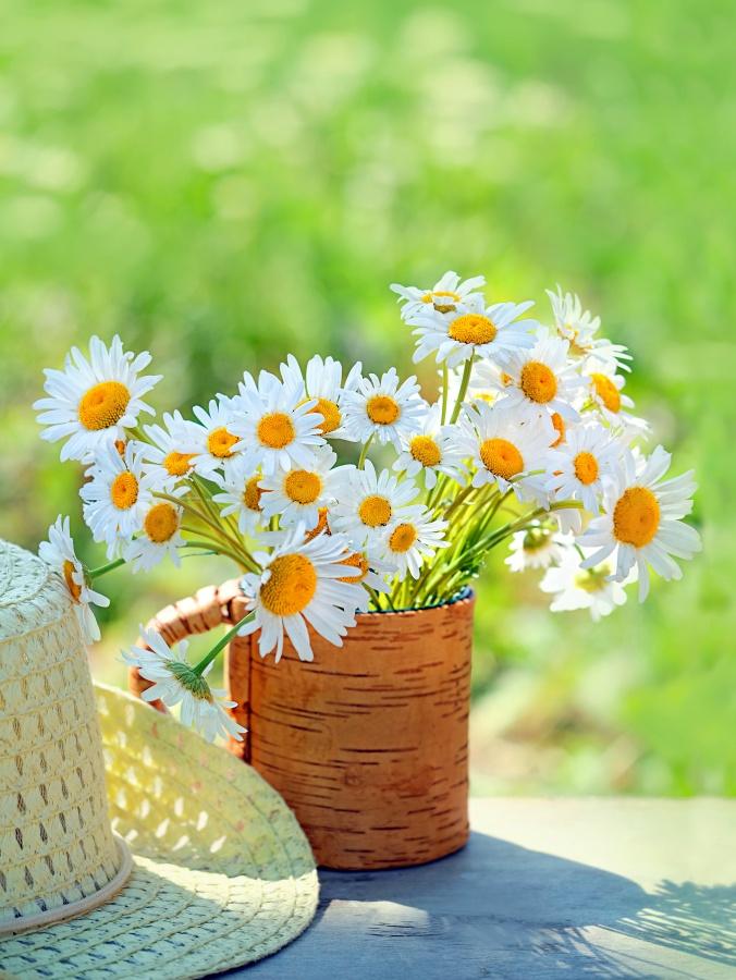 Daisy Flower Arrangement in Birch Bark Vase