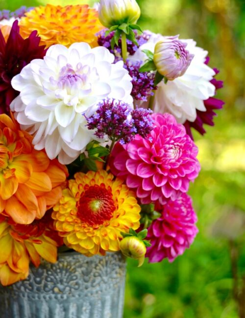 Late Summer Flower Arrangment of Dahlias