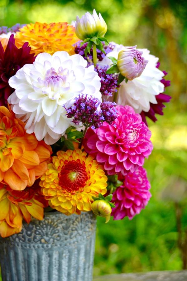 Late Summer Flower Arrangment of Dahlias